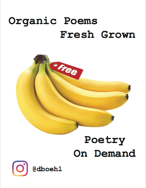 Dan Boehl Poetry on Demand in a Banana Suit for First Night Raleigh 2018 and DIY Festival